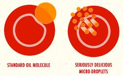 Seriously Delicious oil micro-droplets are much smaller than a standard oil molecule and enter intestinal wall cells easily